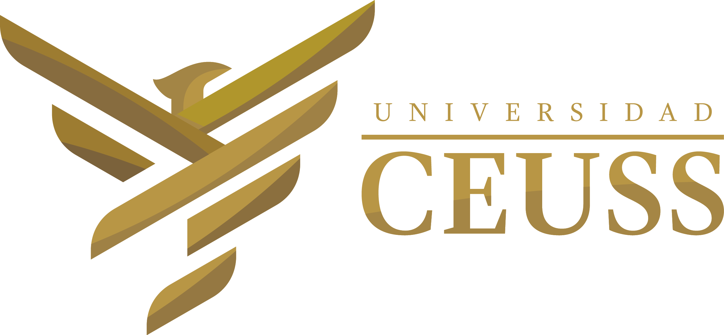 UNIVERSIDAD CEUSS